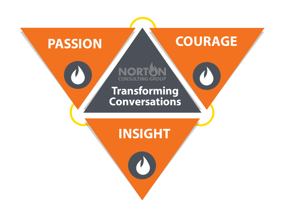 Passion, Courage and Insight with Norton Consulting Group